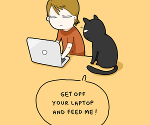 cat, funny, and comics image