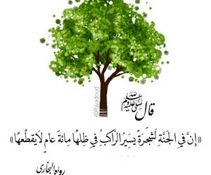 رسول, ظل, and ﷴ image