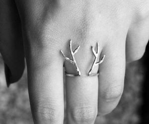 antlers, deer, and jewelry image