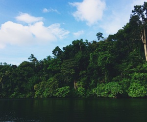 lake, nature, and Philippines image