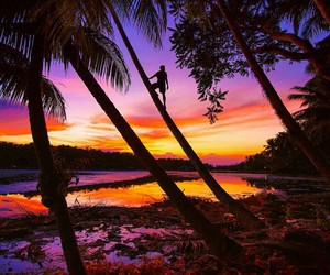travel, Philippines, and pink image