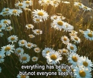 flowers, quotes, and beauty image