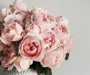 blooms, bouquet, and flowers image