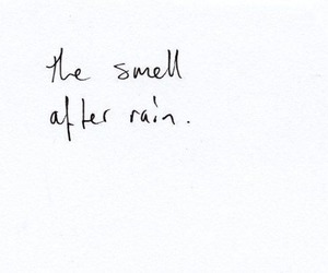 rain, quotes, and smell image