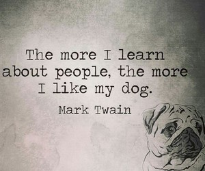 dogs, mark twain, and quotes image