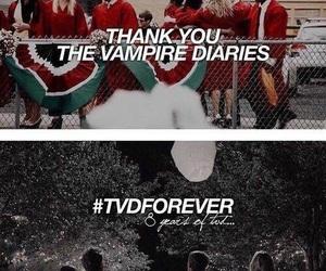 the vampire diaries, tvd, and damon image