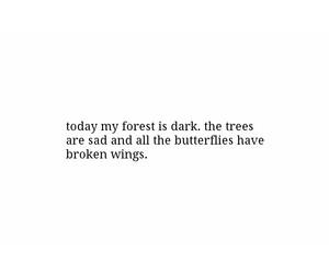 broken, butterflies, and dark image