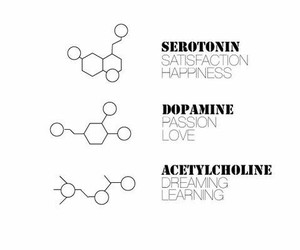 chemistry, dopamine, and dreaming image
