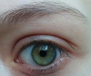eye, green, and green eye image