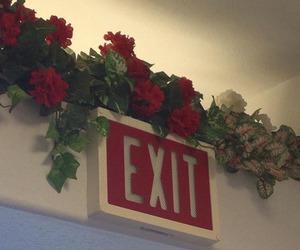 red, exit, and rose image