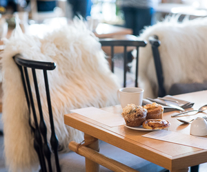 brunch, food, and fur image