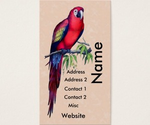 macaw, parrots, and appointment cards image