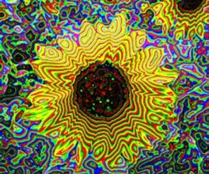 gif, illusion, and hippie image