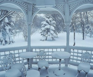 snow, winter, and winter blue image