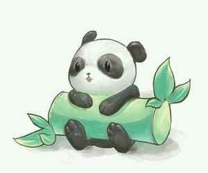 panda, cute, and bamboo image