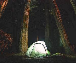 camping, nature, and woods image