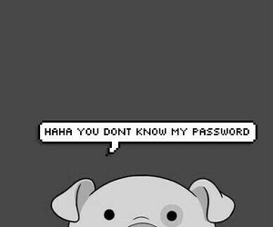 pig, wallpaper, and password image