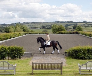 camp, dressage, and horse image