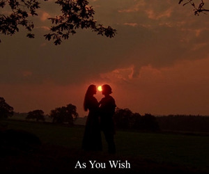 the princess bride and couple image