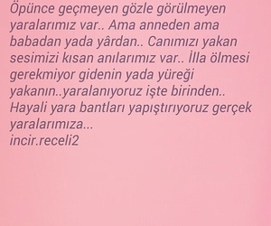 film, türkçe, and edebiyat image