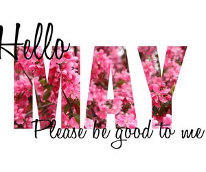 may, hello may, and hello image
