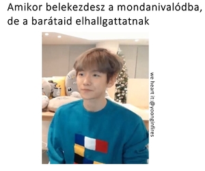 exo, funny, and hungary image