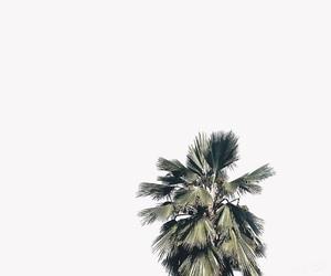 alternative, beach, and california image