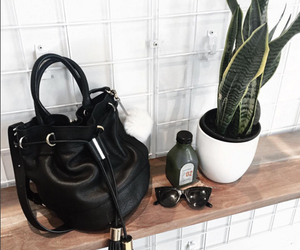 bag, fashion, and plants image