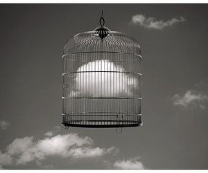 clouds, cage, and sky image