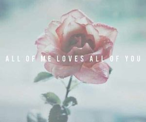 love, quote, and rose image