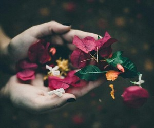 flowers, green, and hands image