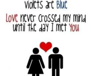 love, roses, and violets image