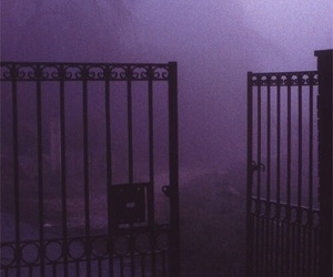 purple, dark, and gate image