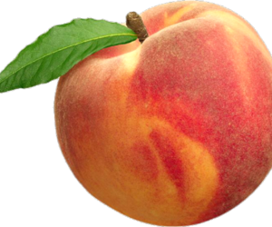 transparent, overlay, and peach image