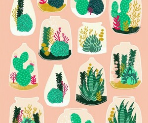 cactus, pattern, and plants image