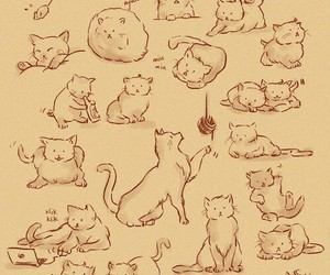 cat, drawing, and kitten image