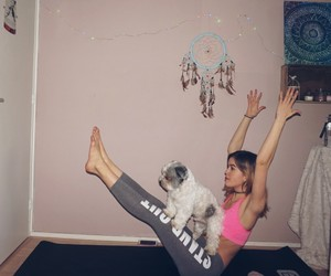 dog, fit, and sport image