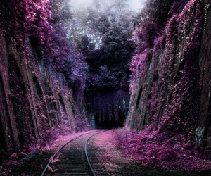 aesthetic, dark, and road image