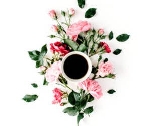 aesthetic, coffee, and flower image