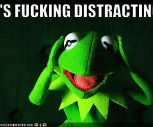 kermit the frog and distracting image