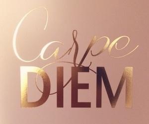 quotes, carpe diem, and life image