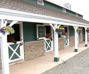 barns, stable, and horse image