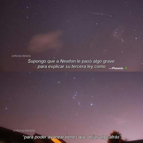 frases, amor, and newton image