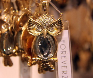 owl, fashion, and forever 21 image
