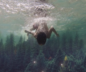 forest, water, and art image
