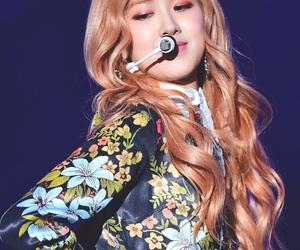 kpop, rose, and idol image