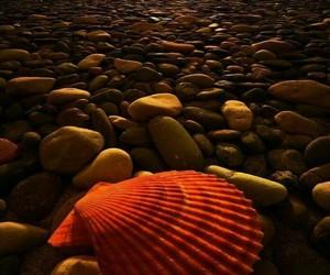 sand, seaside, and sea image