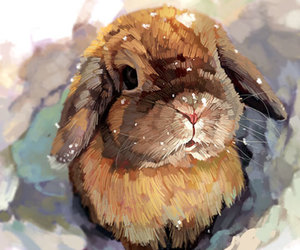 rabbit and watercolor image