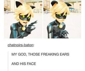 Adrien, black, and cat image