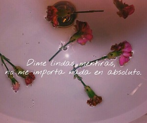 amor, frases, and idfc image